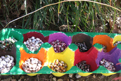 Egg Carton Container for Smaller Paper Beads