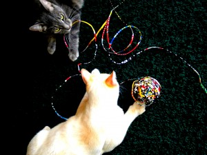 Ball of Magazine String