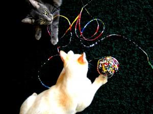 Ball of Magazine String